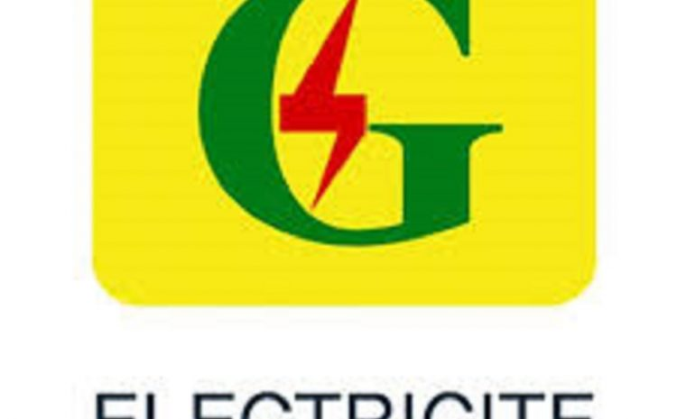 (Guineenews.org)Telecoms  EDG -ETI vers le divorce
