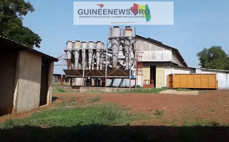 (Guineenews.org)Kankan : le secteur du coton en souffrance