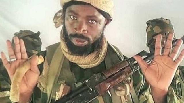 (observateurcontinental)Le chef de Boko Haram tué sur ordre de l'Etat islamique