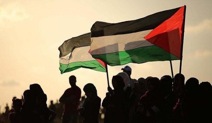 (Reseauinternational)Ces militants & juifs solidaires de la résistance palestinienne… mais, jusqu'où ?