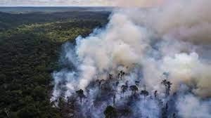 (rfi.fr)Brésil: démission de Ricardo Salles, le polémique ministre de l'Environnement.