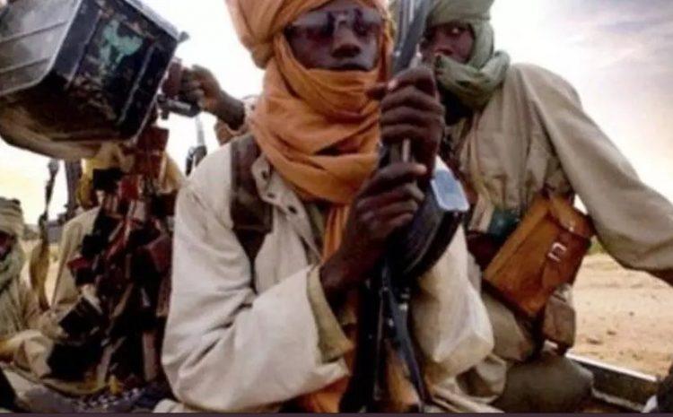 (rfi.fr)Accord dozos-jihadistes à Niono, au Mali «On peut y croire»(rfi.fr)