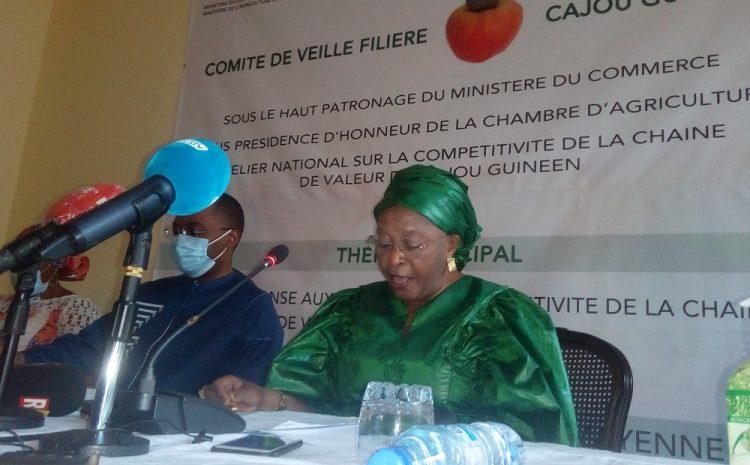 Conakry  la compétitivité du cajou guinéen passée au crible(guinews.org)