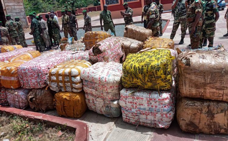 (Guineenews)Kindia : saisie de 2340 kilos de chanvre indien, les convoyeurs en cavale