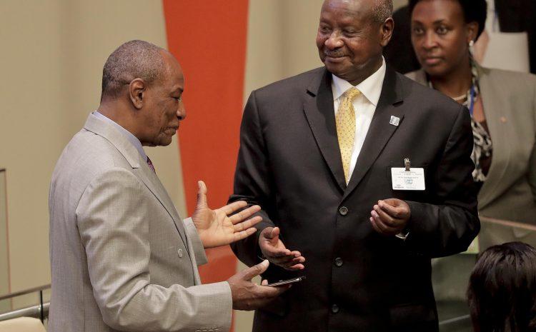 (Guineenews)Coopération Sud-Sud : La Guinée et l'Ouganda projettent de collaborer pour le développement des ressources animales !