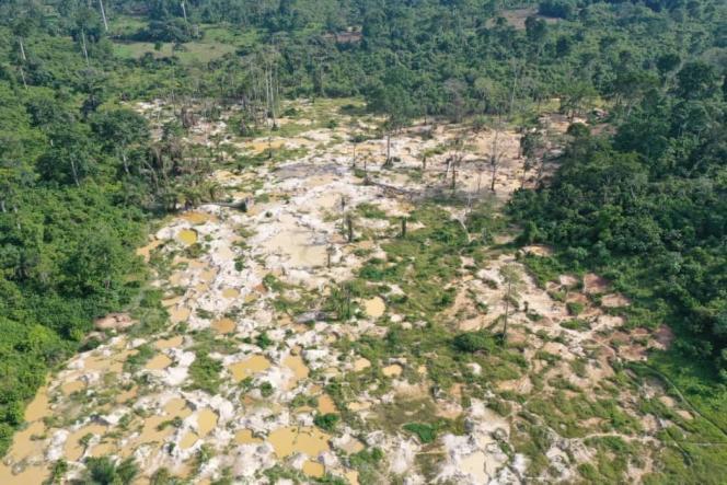 (le monde)En Côte d'Ivoire, une « armée verte » lutte contre la déforestation