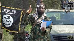 (rfi.fr)Après la mort d'Abubakar Shekau, quel avenir pour Boko Haram?