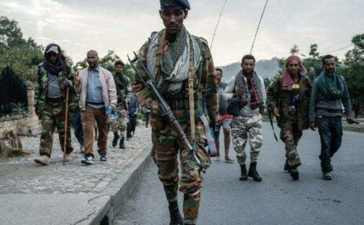 (rfi)Éthiopie : le « Gouvernement du Tigré » pose ses conditions pour un cessez-le-feu