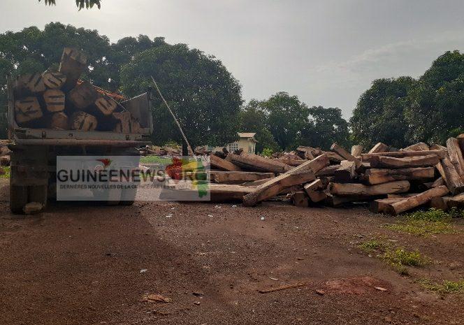 (Guineenews.org)Coupe abusive du bois à Mamou: l'État a t-il vendu les madriers saisis à une compagnie étrangère ?