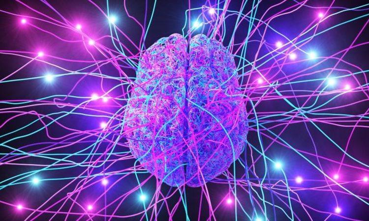 (BBC)Science: pourquoi notre cerveau nous sabote-t-il parfois ?