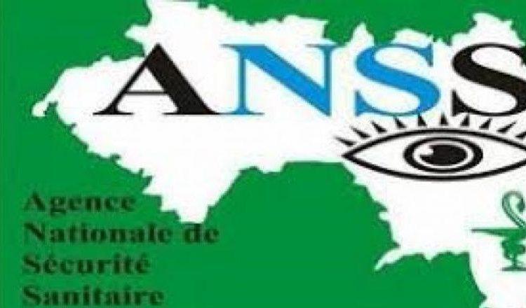 (Guineenews.org)Coronavirus en Guinée: où en est-on avec les nouveaux variants?