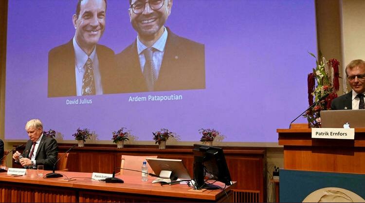 (rfi.fr)Le prix Nobel de médecine attribué à David Julius et Ardem Patapoutian