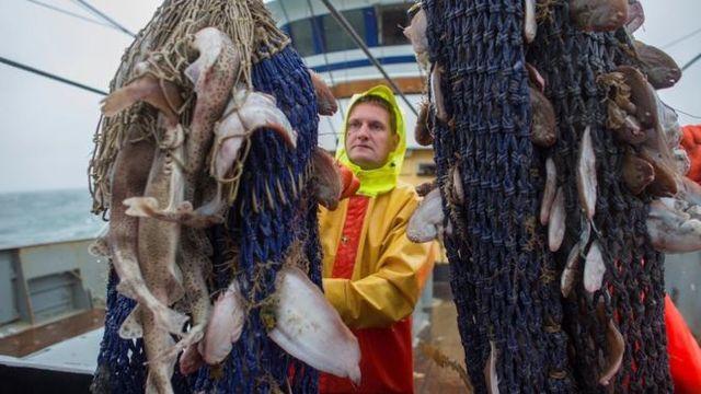 (observateurcontinental)11 pays de l'UE accusent le Royaume-Uni d'avoir violé le traité de pêche