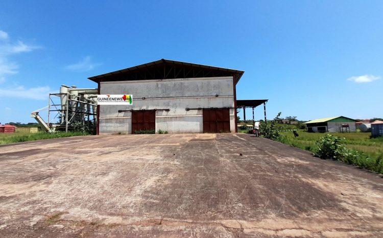 (Guineenews.org)Usine de coton de Siguiri : de la prospérité à la faillite